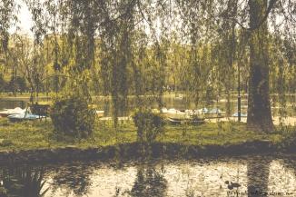 Park Marina